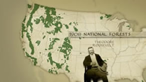Teddy Roosevelts Forest Legacy