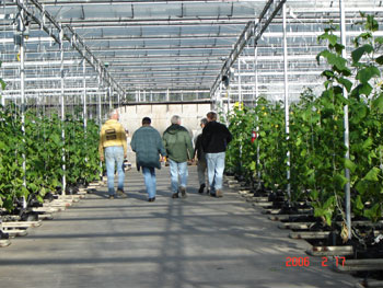 CMEF Greenhouse Tour