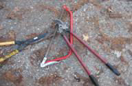 Example of some of the tools associated with Firewise yard maintenance