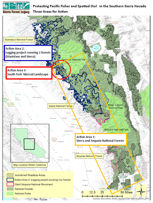 Three Areas for Action in Southern Sierra
