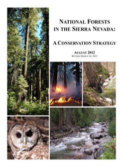 Download the whole Conservation Strategy